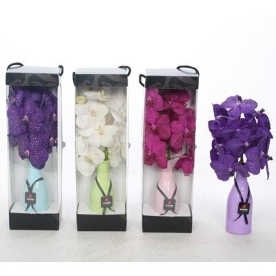 Vanda orchidea vázában + díszdoboz